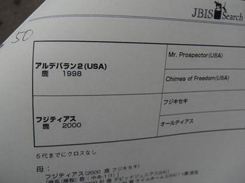 12102605.JPG