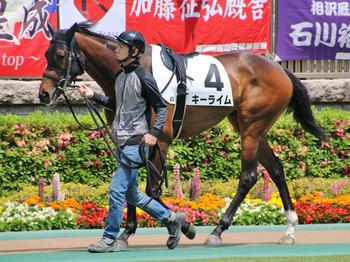 horsePhoto.jpg