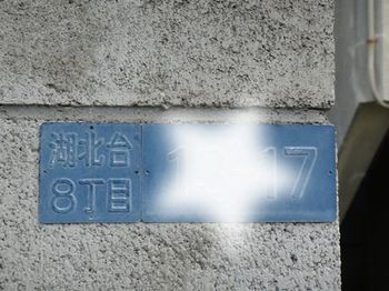 11060501.JPG