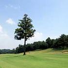 初心者がすんなり楽しめるゴルフコンペ‼️秋の陣 間もなく締め切ります